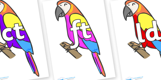 Final Letter Blends on Macaws - Final Letters, final letter, letter blend, letter blends, consonant, consonants, digraph, trigraph, literacy, alphabet, letters, foundation stage literacy
