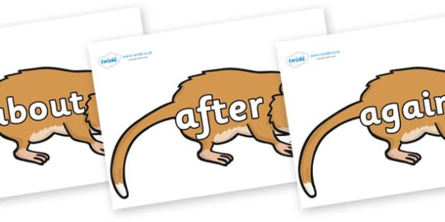 KS1 Keywords on Hamsters - KS1, CLL, Communication language and literacy, Display, Key words, high frequency words, foundation stage literacy, DfES Letters and Sounds, Letters and Sounds, spelling