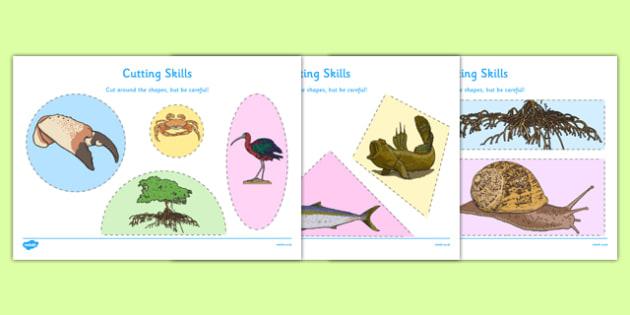 Australian Mangrove Habitat Cutting Skills Worksheet - australia, Science, Year 1, Habitats, Australian Curriculum, Mangroves, Living, Living Adventure, Environment, Living Things, Animals, Plants, Cutting Skills, Fine Motor