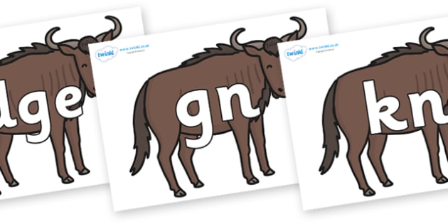 Silent Letters on Wildebeests - Silent Letters, silent letter, letter blend, consonant, consonants, digraph, trigraph, A-Z letters, literacy, alphabet, letters, alternative sounds