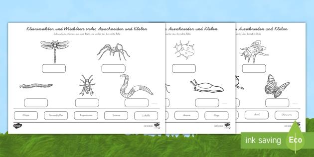 NEW * Kleininsekten und Weichtiere erstes Ausschneiden und