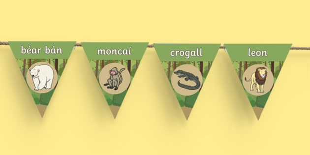 An Zú   Gaeilge Display Bunting