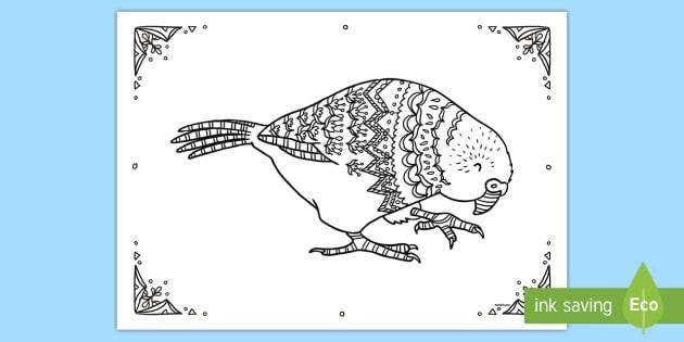 Kakapo Mindfulness Colouring Page