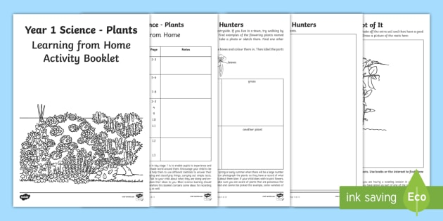 year 1 science learning from home activity booklet worksheets plants. Black Bedroom Furniture Sets. Home Design Ideas