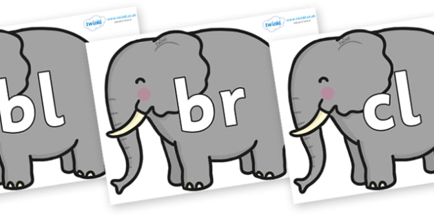 Initial Letter Blends on Elephants - Initial Letters, initial letter, letter blend, letter blends, consonant, consonants, digraph, trigraph, literacy, alphabet, letters, foundation stage literacy