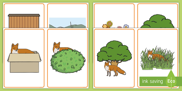 Where is the Fox? Positional Language Picture Cards - EYFS, Early Years, prepositions, Communication and Language, Maths, in front, behind, next to, under