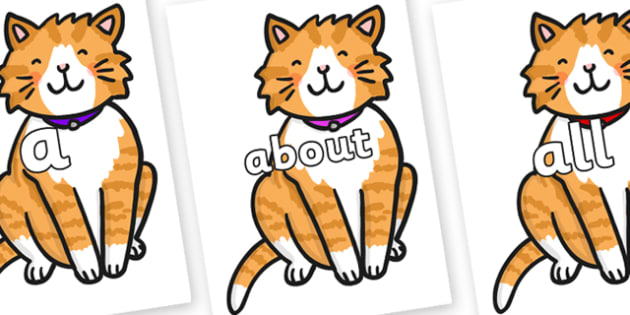100 High Frequency Words on Cat - High frequency words, hfw, DfES Letters and Sounds, Letters and Sounds, display words