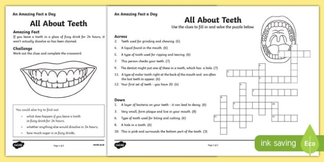 All About Teeth Crossword Worksheet Activity Sheet