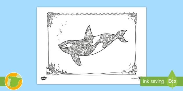 NEW * Hoja de colorear: La orca - pintar, pinta, colorea