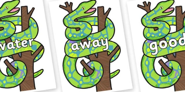 Next 200 Common Words on Boa Constrictor to Support Teaching on The Bad Tempered Ladybird- Next 200 Common Words on  - DfES Letters and Sounds, Letters and Sounds, Letters and sounds words, Common words, 200 common words