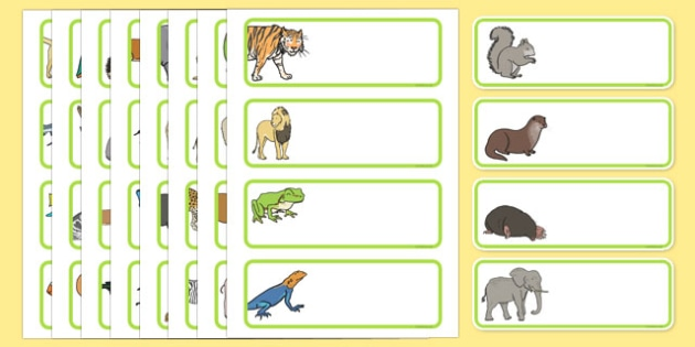 Animal Themed Drawer Peg Name Labels Editable - animal, labels