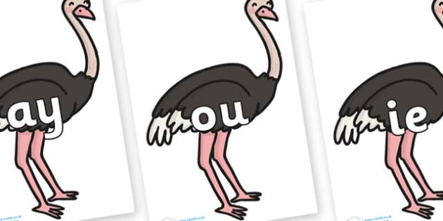 Phase 5 Phonemes on Ostriches - Phonemes, phoneme, Phase 5, Phase five, Foundation, Literacy, Letters and Sounds, DfES, display