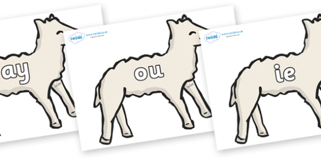 Phase 5 Phonemes on Lambs - Phonemes, phoneme, Phase 5, Phase five, Foundation, Literacy, Letters and Sounds, DfES, display