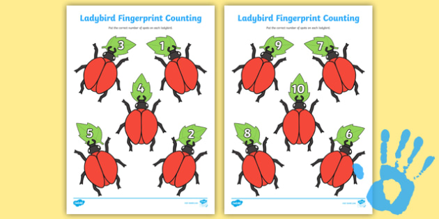 Ladybird Fingerprint Counting Activity Sheet Pack - EYFS activities, number, EAD, minibeasts, insects, worksheet