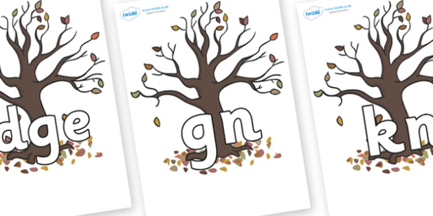 Silent Letters on Autumn Trees - Silent Letters, silent letter, letter blend, consonant, consonants, digraph, trigraph, A-Z letters, literacy, alphabet, letters, alternative sounds