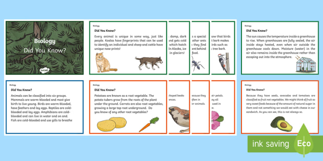 Australia Biological Science Did You Know Fact Cards - Australia Science, year 5, year 6, biological science, did you know, fact cards word wall, informati