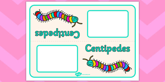 Centipedes Table Signs - centipedes, table signs, minibeasts