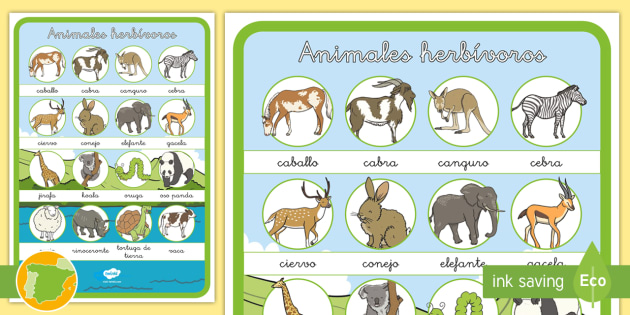 P 243 Ster Animales Herb 237 Voros Animales Clasificaci 243 N Dieta
