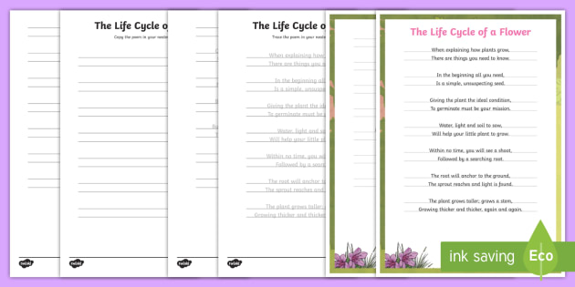 Life Cycle Of A Plant Handwriting Poem Worksheet Activity