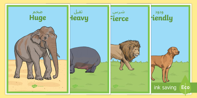 zoo animals adjectives display posters arabic english zoo. Black Bedroom Furniture Sets. Home Design Ideas