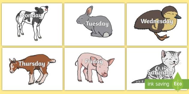 Days of the Week on Cute Animals - days, weeks, animals, display