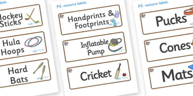 Squirrel Themed Editable PE Resource Labels - Themed PE label, PE equipment, PE, physical education, PE cupboard, PE, physical development, quoits, cones, bats, balls, Resource Label, Editable Labels, KS1 Labels, Foundation Labels, Foundation Stage L
