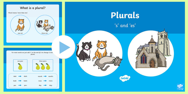 Plurals s and es Teaching PowerPoint - literacy, english, ppt