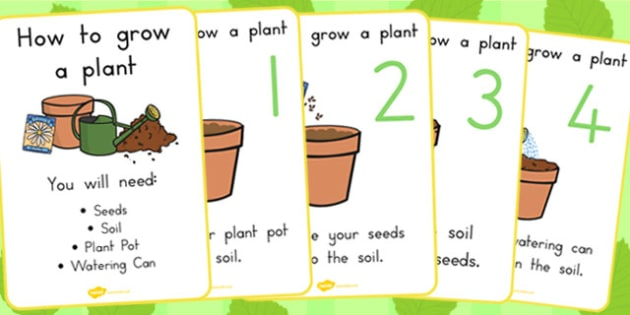 How to Grow a Plant Posters - Australia, Plant, Grow, How to