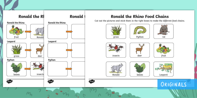 Ronald The Rhino Food Chains Worksheet Activity Sheet
