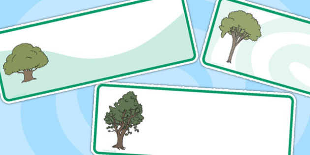 Editable Tree Labels - trees, tree labels, editable labels, labels for trees, nature, science, types of tree, drawer labels, peg labels, drawer peg labels