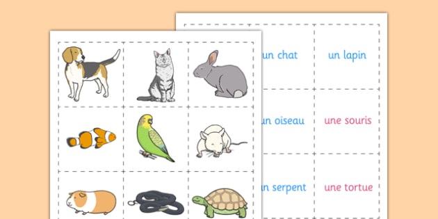 French Pets Memory Match Game - french, pets, memory, match, game, activity