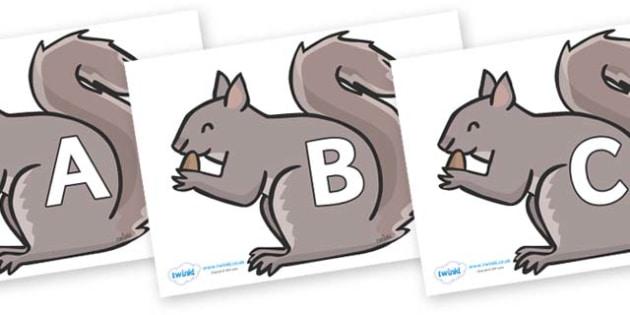 A-Z Alphabet on Grey Squirrels - A-Z, A4, display, Alphabet frieze, Display letters, Letter posters, A-Z letters, Alphabet flashcards