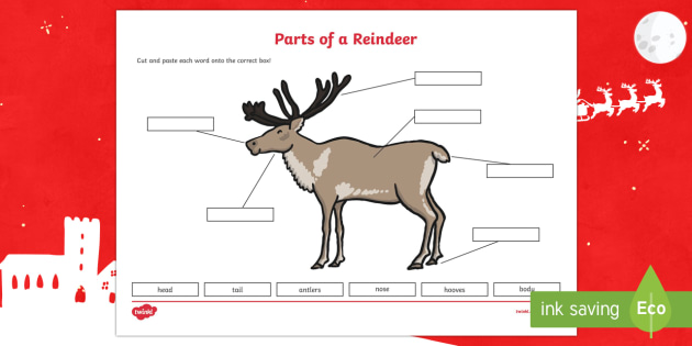 Parts of a Reindeer Cutting Skills Activity Sheet