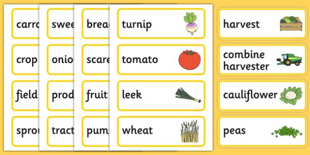 Harvest Pre-Teaching Word Cards - harvest, pre-teaching, word cards