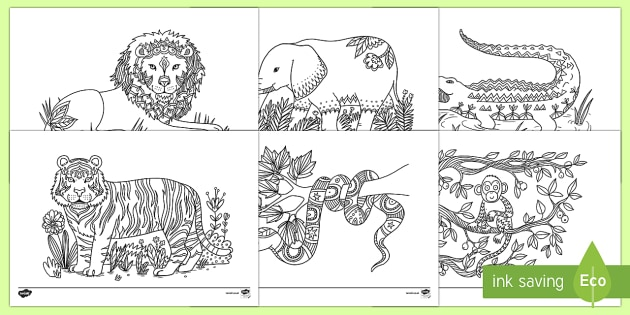 Jungle Animals Mindfulness Colouring Pages Ks1 Resources