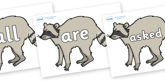 Tricky Words on Racoons - Tricky words, DfES Letters and Sounds, Letters and sounds, display, words