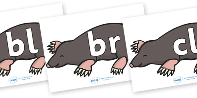 Initial Letter Blends on Moles - Initial Letters, initial letter, letter blend, letter blends, consonant, consonants, digraph, trigraph, literacy, alphabet, letters, foundation stage literacy