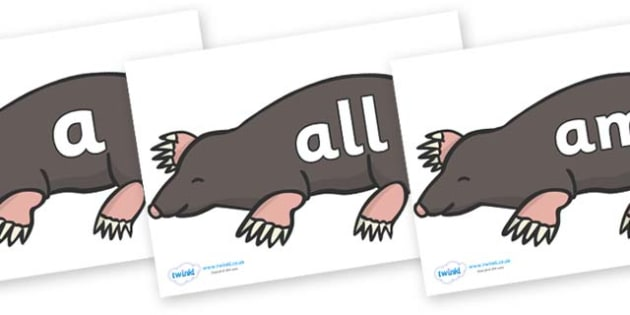Foundation Stage 2 Keywords on Moles - FS2, CLL, keywords, Communication language and literacy,  Display, Key words, high frequency words, foundation stage literacy, DfES Letters and Sounds, Letters and Sounds, spelling