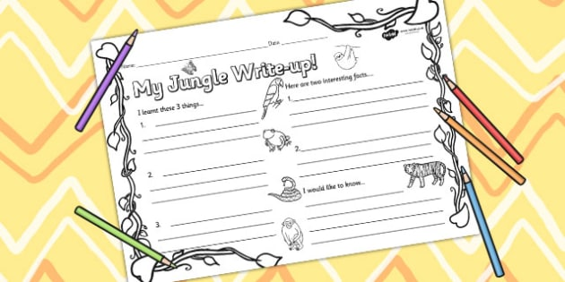 Jungle Themed Write Up Worksheet - jungle, writing, animals
