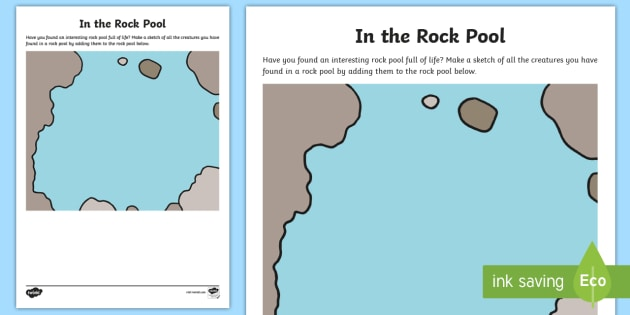 In a Rock Pool Sketching Worksheet / Activity Sheet - Beach