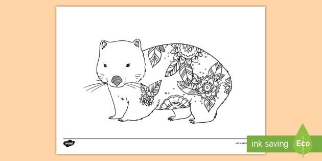 au t2 t 1319 wombat mindfulness colouring page english australian ver 1