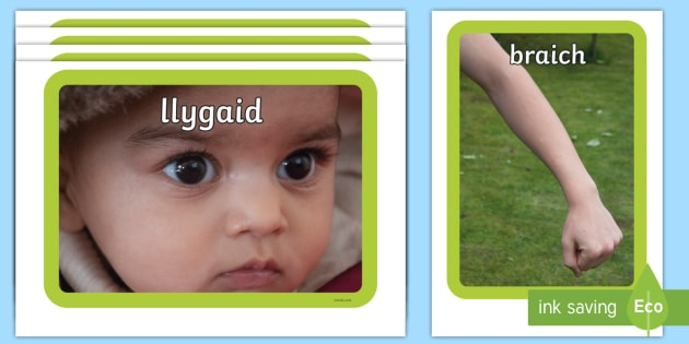 Parts of the Body Photo Pack Cymraeg - welsh, cymraeg, pictures, images, information, visual aid, group, science, nature, people, legs, arms, head, photographs, ks1, ks2