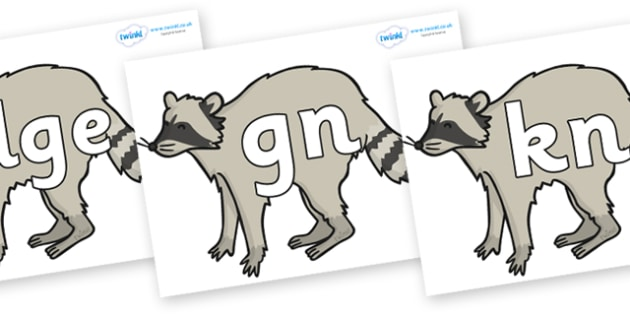 Silent Letters on Raccoons - Silent Letters, silent letter, letter blend, consonant, consonants, digraph, trigraph, A-Z letters, literacy, alphabet, letters, alternative sounds