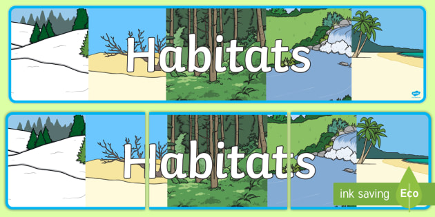 Habitats Display Banner - habitats, display, banner, sign, poster, animals, living, area