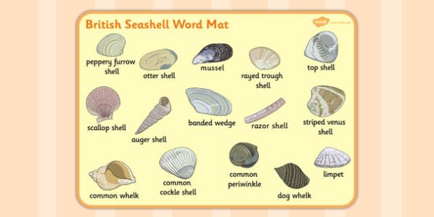 British Seashell Word Mat - british seashell, word mat, word, mat