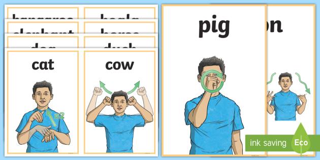 Auslan Animal Sign Cards - Australia (teacher made)