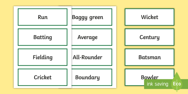 Cricket Word Cards - Cricket,Australia,cricket word cards, cricket vocabulary, australian cricket resources, sport, healt