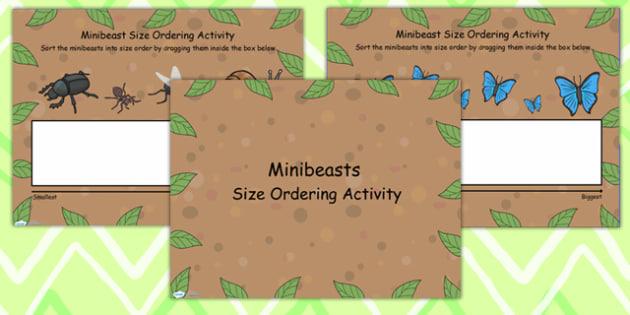 Minibeast Size Ordering Flipchart - minibeast, size, order, shape
