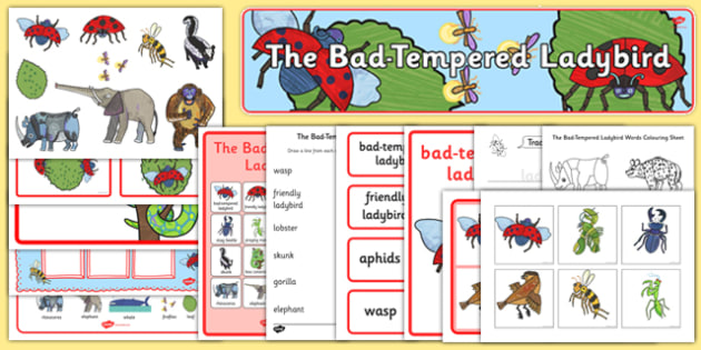 Story Sack to Support Teaching on The Bad Tempered Ladybird - stories, story books