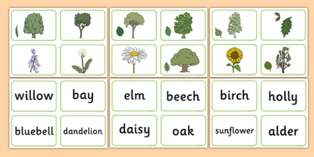 Nature Tree Matching Cards - nature, tree, matching cards, matching, cards, match